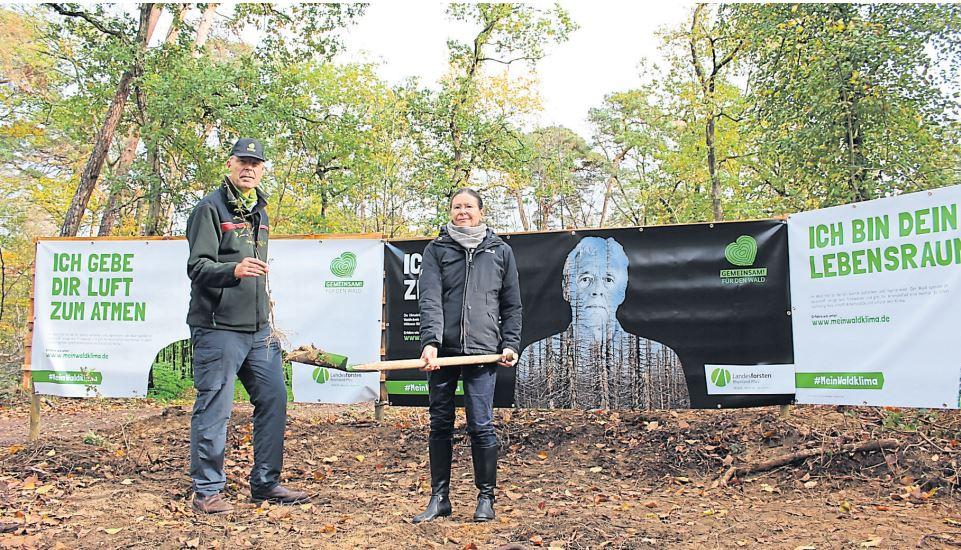 Klima schützen und Wald retten